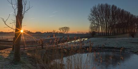 Winter in Damme